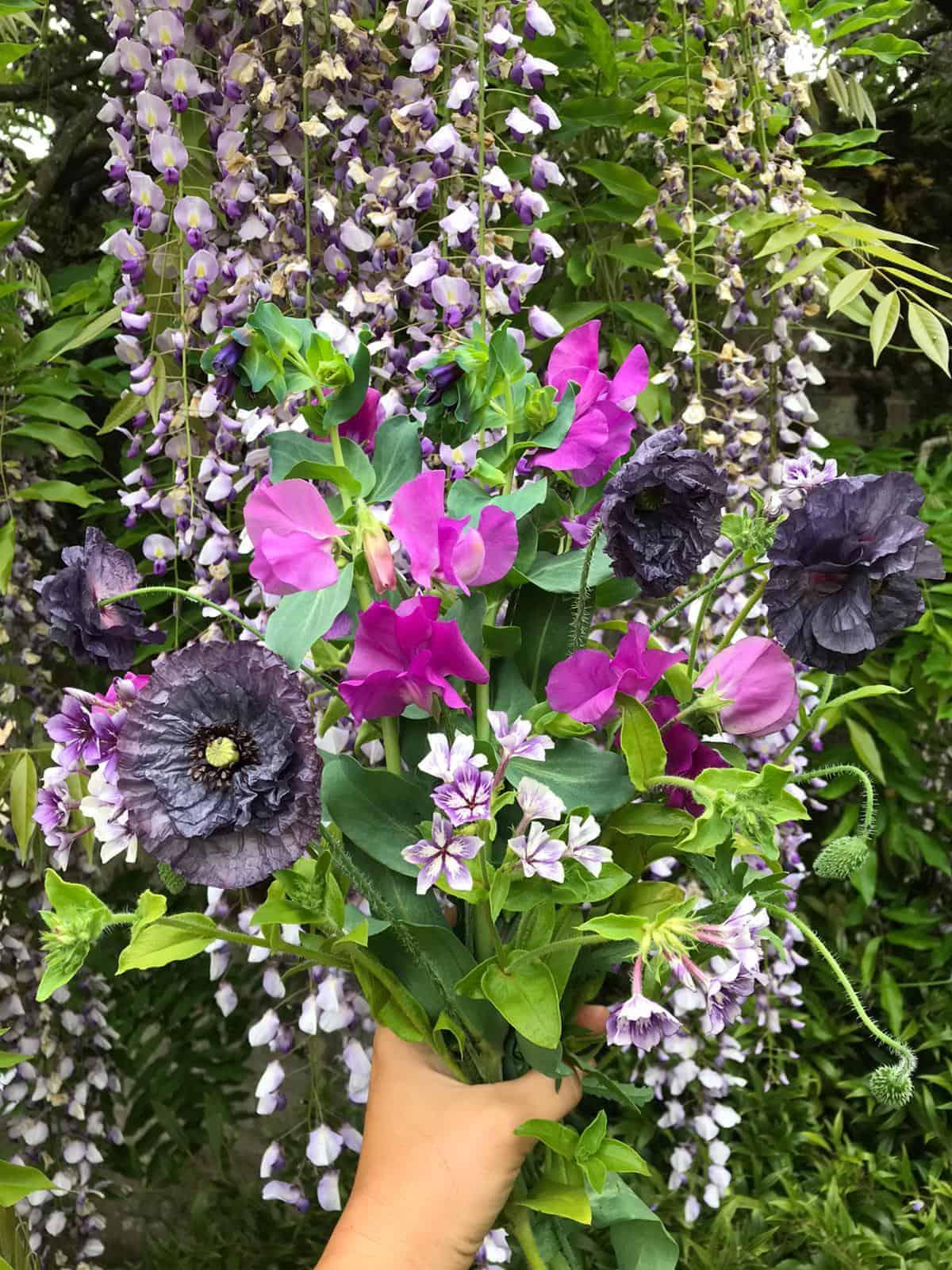 Fresh cut flowers from the Parham Garden